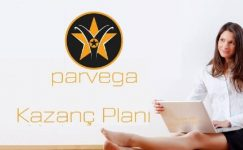 Parvega ve Network Marketing